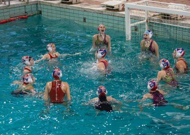 Crvena zvezda Kup Srbije 2006